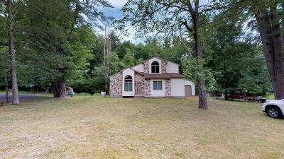 Bushkill Single Family Home For Sale: 622 Mink Court