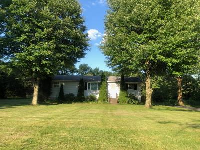 Kunkletown Single Family Home For Sale: 484 Burger Hollow Rd