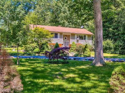 East Stroudsburg Single Family Home For Sale: 130 Savage Trl