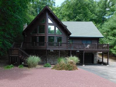 Bushkill Single Family Home For Sale: 418 Saunders Drive
