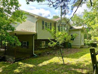 Effort Single Family Home For Sale: 724 Timberline Trail