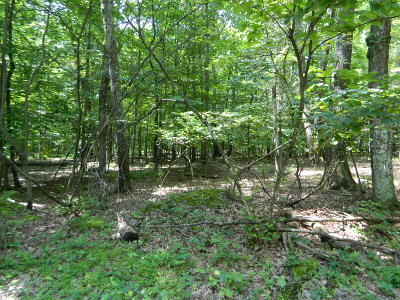 Stroudsburg Residential Lots & Land For Sale: 4 Pine Mountain Road