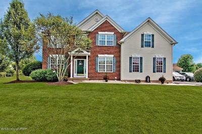 Kunkletown Single Family Home For Sale: 123 Eagle Dr