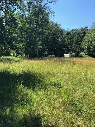 East Stroudsburg Residential Lots & Land For Sale: 1153 Sylvan Ln