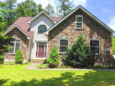 Tobyhanna Single Family Home For Sale: 303 Ruger Ln