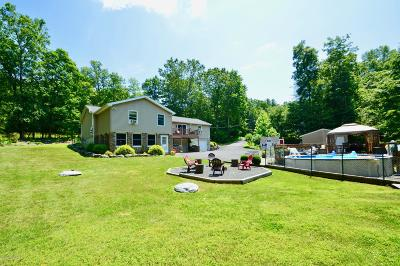 East Stroudsburg Single Family Home For Sale: 58 Brush Dr
