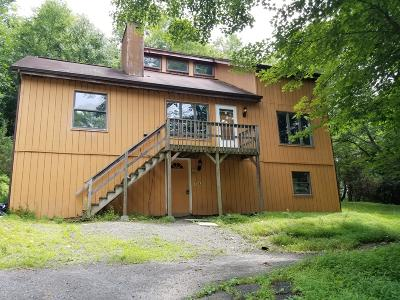 East Stroudsburg Single Family Home For Sale: 306 Days Cir
