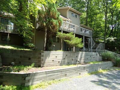 Bushkill Single Family Home For Sale: 6463 Decker Rd