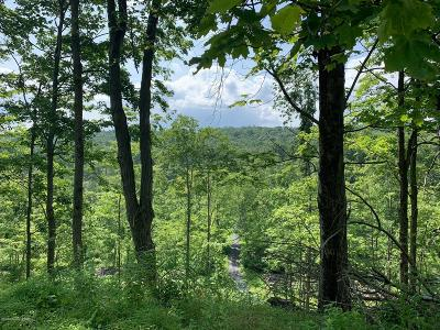 East Stroudsburg Residential Lots & Land For Sale: Pa Rt 209