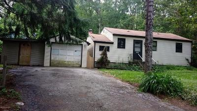 Mount Pocono Single Family Home For Sale: 80 Fairview Ave