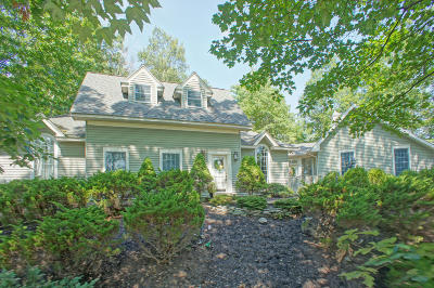 Country Club Of The Poconos Single Family Home For Sale: 601 Eagle Dr