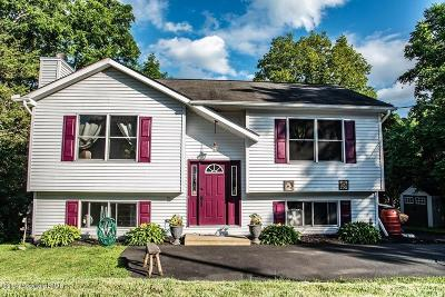 East Stroudsburg Single Family Home For Sale: 2195 Green Mtn