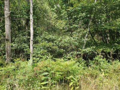 Monroe County Residential Lots & Land For Sale: Lr 45086 9 Kuhenbeaker Road