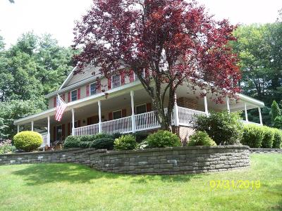 Stroudsburg Single Family Home For Sale: 210 Joann Road