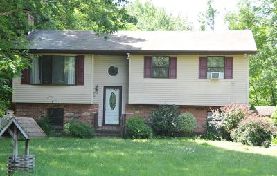 Stroudsburg Single Family Home For Sale: 112 Stender Rd