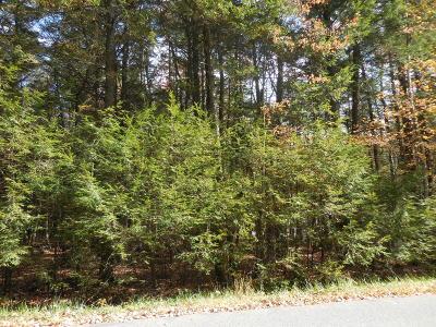 Pocono Lake Residential Lots & Land For Sale: 135 King Arthur Rd