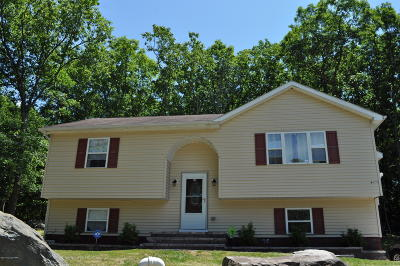 East Stroudsburg Single Family Home For Sale: 353 Overlook Dr