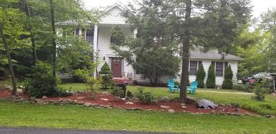 Tobyhanna PA Single Family Home For Sale: $225,000