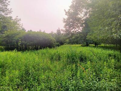 Monroe County Residential Lots & Land For Sale: Hellers Ln