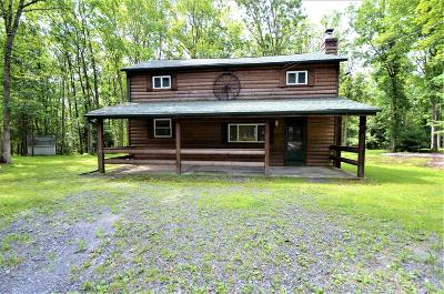 Jim Thorpe Single Family Home For Sale: 279 Bear Creek Dr