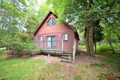 Towamensing Trails Single Family Home For Sale: 602 Stony Mountain Rd