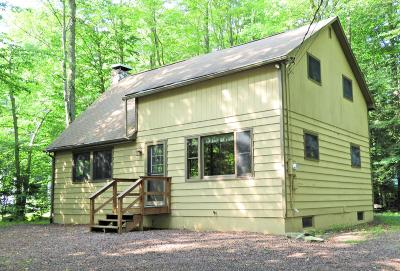 Monroe County Single Family Home For Sale: 324 Canoe Brook Road