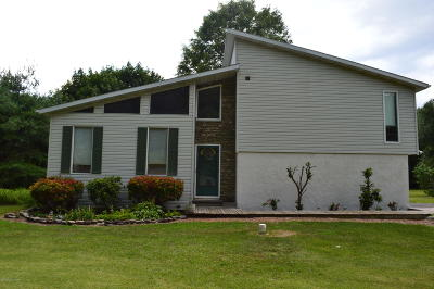 Monroe County Single Family Home For Sale: 479 Route 715