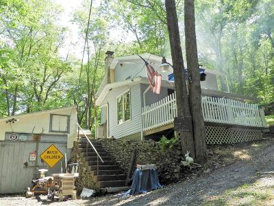 Kunkletown PA Single Family Home For Sale: $120,000