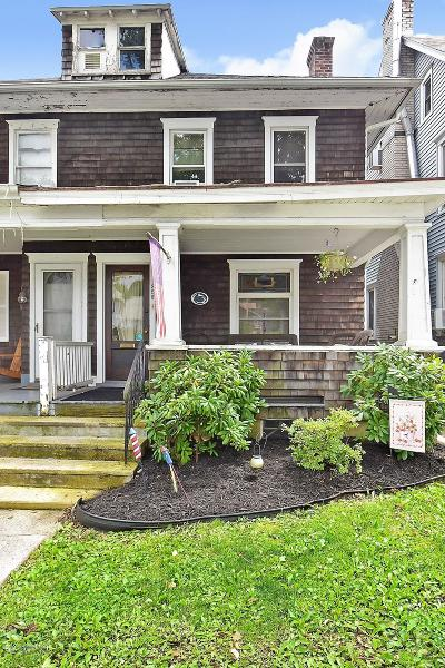 Palmerton Single Family Home For Sale: 258 Columbia Ave