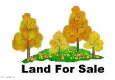 Stroudsburg Residential Lots & Land For Sale: 413 Running Valley Rd/T 434
