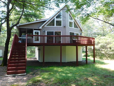 Towamensing Trails Single Family Home For Sale: 224 Petrarch Trl