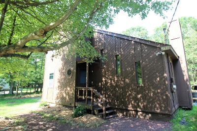 Towamensing Trails Single Family Home For Sale: 830 Old Stage Road