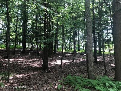 Stroudsburg Residential Lots & Land For Sale: Lot 12 Hillside Ct