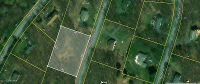 Tannersville Residential Lots & Land For Sale: 25 Marcelle Ter