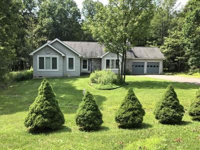 Mount Pocono Single Family Home For Sale: 54 Mountain Dr