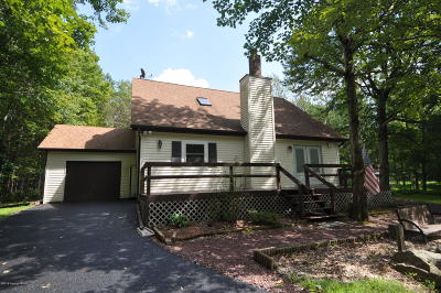 Jim Thorpe Single Family Home For Sale: 125 Cold Spring Dr