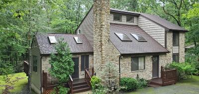 Pike County Single Family Home For Sale: 126 Stirrup Ln