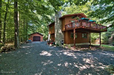 Pocono Pines PA Single Family Home For Sale: $259,000