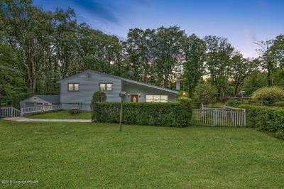 Single Family Home For Sale: 202 Manor View Ave