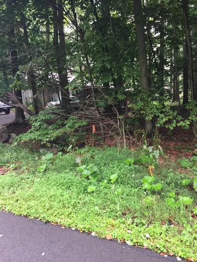 Lake Naomi Residential Lots & Land For Sale: lot 32&33 Canoe Brook Rd