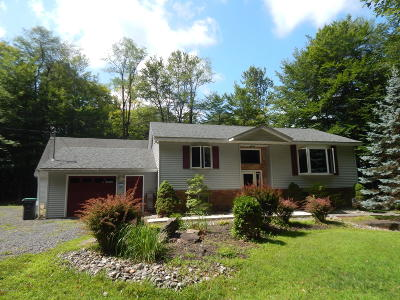Blakeslee Single Family Home For Sale: 114 High Country Dr