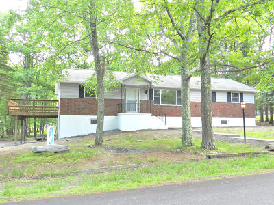 Bushkill Single Family Home For Sale: 135 Hanky Hill Dr