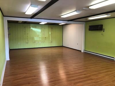 Brodheadsville Commercial For Sale: 1546 209 Rte