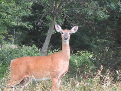 Pocono Summit Residential Lots & Land For Sale: Lot # 1508 Scotch Pine, (Hemlock) Dr