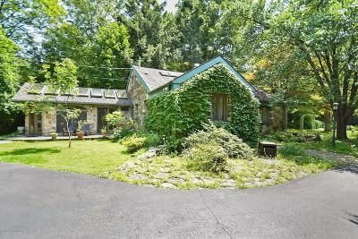 Pike County Single Family Home For Sale: 258 Silver Lake Rd