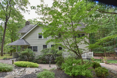 Buck Hill Falls Single Family Home For Sale: 3161 Ledge Dr