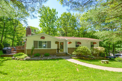 Saylorsburg Single Family Home For Sale: 243 Rossmor Dr