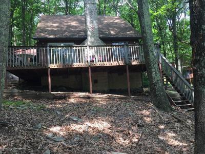 Bushkill Single Family Home For Sale: 192 Bellingham Dr