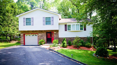 East Stroudsburg Single Family Home For Sale: 9 Laurel Ln