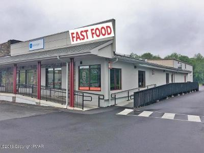 Tannersville Commercial For Sale: 2936 State Route 611